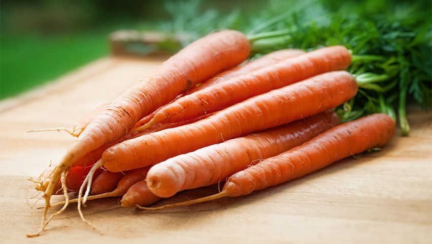 carrots - 3 Human Foods Good for Dog Training Treats