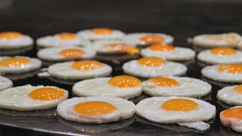 eggs - 3 Human Foods Good for Dog Training Treats